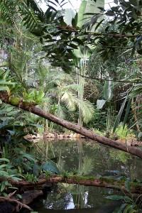 Botanická zahrada Teplice (3)