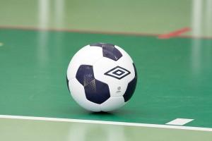 FK Teplice (4)