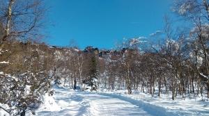 Sněžník (3)