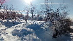 Sněžník (4)