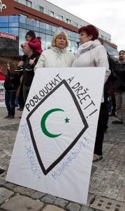 Demostrace Teplice, Arabové (11)