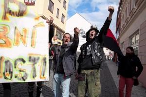 Demostrace Teplice, Arabové (15)