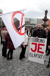 Demostrace Teplice, Arabové (7)
